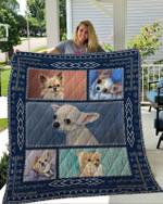 Chihuahua Cute Puppy Chihuahua Quilt Blanket