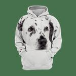 Unisex 3D Graphic Hoodies Animals Dogs Dalmatian Quiet