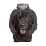 Unisex 3D Graphic Hoodies Animals Dogs Newfoundland Happy