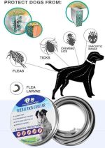 Pro Guard Flea and Tick Collar for Pets