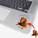 Pawperty Of Pet Customized Photo Stickers Gift For Dog Dads, Pet Moms, Anniversary Gift For Girlfriend, Boyfriend