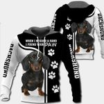 Dachshund 3D Hoodie When I Needed A Hand I Found Your Paw