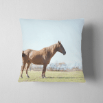 Young Mare Horse Alone Spring Farm Pillow Case Cover