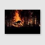Bushfire Australia Forest Many Kangaroos Other Poster, Pillow Case, Tumbler, Sticker, Ornament