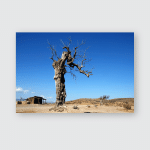 Abandoned Ranch Lonely Dead Tree Poster, Pillow Case, Tumbler, Sticker, Ornament