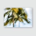 Abstract Background Blurred Palm Leaves Motion Poster, Pillow Case, Tumbler, Sticker, Ornament