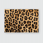 Leopard Fur Texture Real Poster, Pillow Case, Tumbler, Sticker, Ornament