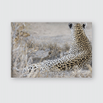 Leopard Mother Cares Her Cub Gathering Poster, Pillow Case, Tumbler, Sticker, Ornament