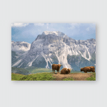 Cattle Italian Dolimites Alp Mountains This Poster, Pillow Case, Tumbler, Sticker, Ornament