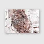 Termite Nest On Dead Tree Poster, Pillow Case, Tumbler, Sticker, Ornament