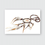 Dream Catcher On White Background Isolated Poster, Pillow Case, Tumbler, Sticker, Ornament