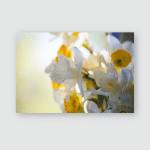 White Yellow Easter Lilly On Light Poster, Pillow Case, Tumbler, Sticker, Ornament
