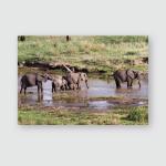 Drinking Elephants Tarangire River Tanzania Poster, Pillow Case, Tumbler, Sticker, Ornament