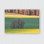 Indian Summer Pond Alpine Upland Allgau Poster, Pillow Case, Tumbler, Sticker, Ornament