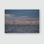 Oyster Catchers On Beach Sunset Poster, Pillow Case, Tumbler, Sticker, Ornament