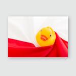 Duck Sitting On Polish Flag Poster, Pillow Case, Tumbler, Sticker, Ornament