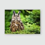 Eagle Owl Poster, Pillow Case, Tumbler, Sticker, Ornament