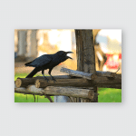 Irritated Agitated Crowing Black Raven Loudly Poster, Pillow Case, Tumbler, Sticker, Ornament