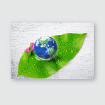 Earth On Green Leaf Water Drops Poster, Pillow Case, Tumbler, Sticker, Ornament