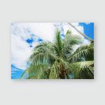 Palm Leaves Sky Summer Ssunlight Poster, Pillow Case, Tumbler, Sticker, Ornament