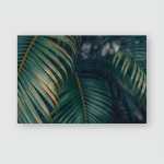 Palm Leaves Wallpaper Close Nature Background Poster, Pillow Case, Tumbler, Sticker, Ornament