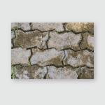 Brick Textues Poster, Pillow Case, Tumbler, Sticker, Ornament