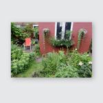 Small Urban Back Garden Poster, Pillow Case, Tumbler, Sticker, Ornament