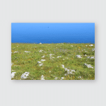 Italy Otranto Typical Coast Near Punta Poster, Pillow Case, Tumbler, Sticker, Ornament