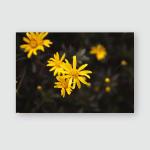 Winter Flower Middle Poster, Pillow Case, Tumbler, Sticker, Ornament