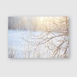 Winter Forest Frozen Brunches Sunlight Poster, Pillow Case, Tumbler, Sticker, Ornament