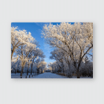 Winter Frost Saskatchewan Canada Ice Storm Poster, Pillow Case, Tumbler, Sticker, Ornament