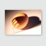 Egg Shape Texture Shadow Poster, Pillow Case, Tumbler, Sticker, Ornament