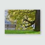 Park Bench Big Tree City River Poster, Pillow Case, Tumbler, Sticker, Ornament