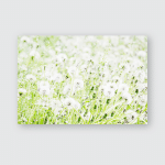 Partially Blurred Natural Summer Background Fluffy Poster, Pillow Case, Tumbler, Sticker, Ornament