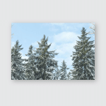 Snow Covered Sunny Winter Landscape Panorama Poster, Pillow Case, Tumbler, Sticker, Ornament