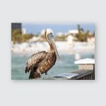 Brown Pelican Bird Posing On Railing Poster, Pillow Case, Tumbler, Sticker, Ornament