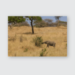 Elephants Amazing Tanzania Poster, Pillow Case, Tumbler, Sticker, Ornament