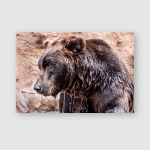 Kamchatka Bear Out Water Coat Flows Poster, Pillow Case, Tumbler, Sticker, Ornament