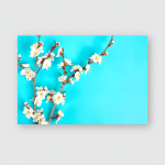 Sprigs Apricot Tree Flowers On Blue Poster, Pillow Case, Tumbler, Sticker, Ornament