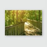 Wooden Walkway Through Deep Rain Forest Poster, Pillow Case, Tumbler, Sticker, Ornament