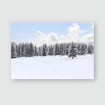 Spruce Forest Winter Poster, Pillow Case, Tumbler, Sticker, Ornament