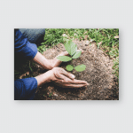 World Environment Day Reforesting Hands Young Poster, Pillow Case, Tumbler, Sticker, Ornament