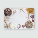 Starfish Shells On Fine White Sand Poster, Pillow Case, Tumbler, Sticker, Ornament