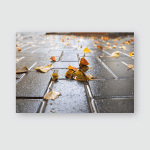 Yellow Leaves On Wet Pavement Fall Poster, Pillow Case, Tumbler, Sticker, Ornament