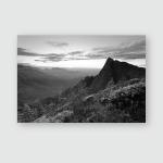 Sun Rays Falling Valley Tea Estates Poster, Pillow Case, Tumbler, Sticker, Ornament