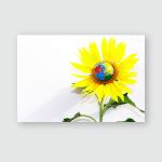 Sunflower Earth Globe Sunlight On White Poster, Pillow Case, Tumbler, Sticker, Ornament