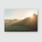 Sunrise Beautiful Sun Rays Over Nature Poster, Pillow Case, Tumbler, Sticker, Ornament