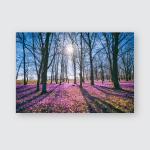 Sunny Flowering Forest Carpet Wild Violet Poster, Pillow Case, Tumbler, Sticker, Ornament