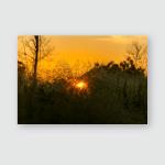 Sunset Beautiful Sky Orange Golden Clouds Poster, Pillow Case, Tumbler, Sticker, Ornament