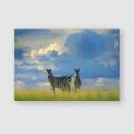 Zebra Blue Storm Sky Burchells Equus Poster, Pillow Case, Tumbler, Sticker, Ornament